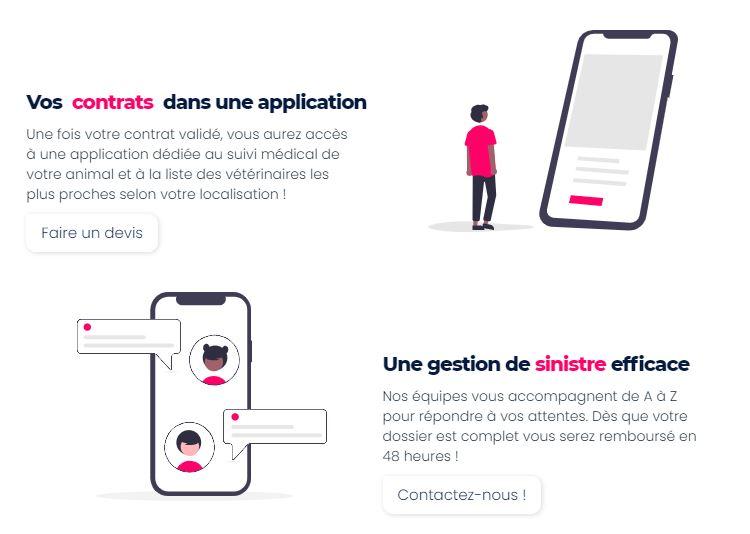 仏のペット保険スタートアップ・injoyeのサポート体制