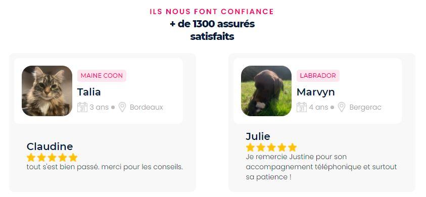仏のペット保険スタートアップ・injoyeの顧客レビュー